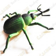 """Cache """"Insecto"""" - Gran escarabajo verde"""